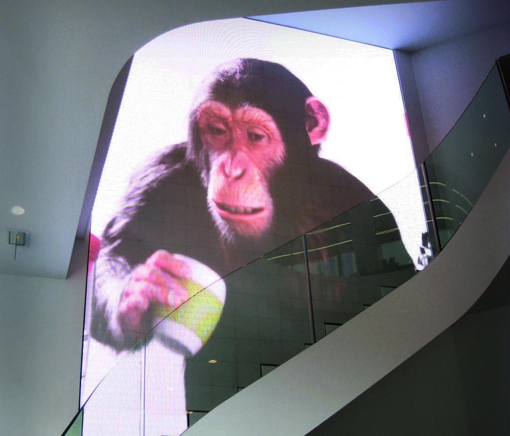 magasin écrans géants à led videotruck